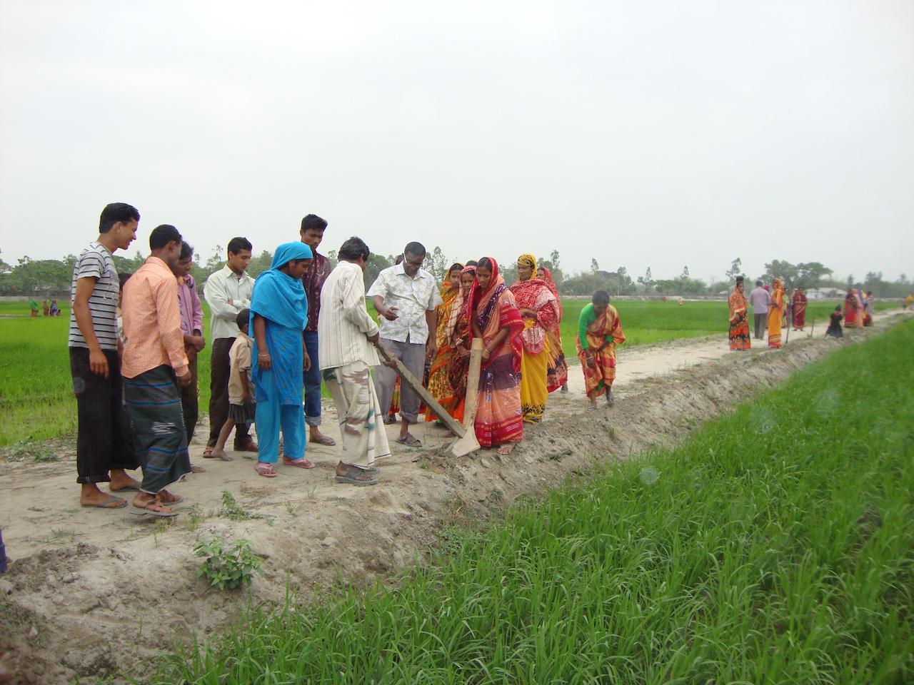 Facilitate indigo cultivation in NCVI  with  ODF leaders